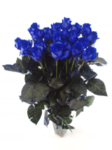 Rozvoz modrých růží - Liberec