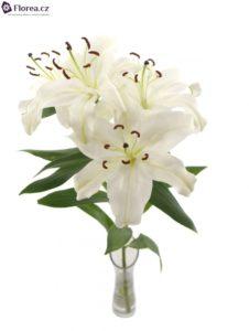Bílá kytice - lilie