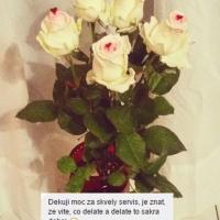 Krásné květiny z lásky