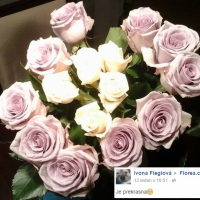 Růže spokojeného zákazníka
