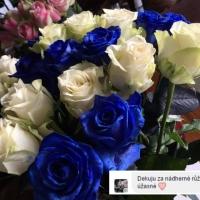 Reference - rozvoz květin